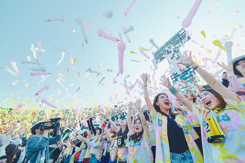 TORACO DAY 2019
